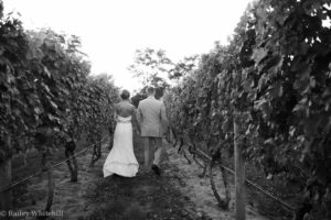 Ceremony and Celebration at a Local Vineyard